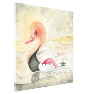 Pochard Duck In Golden Dawn Gallery Wrapped Canvas