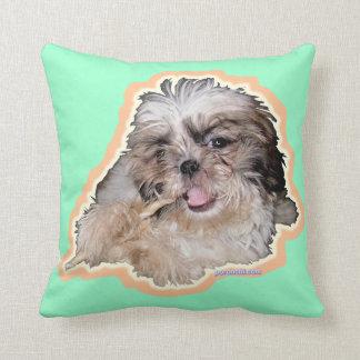Pochi pillows cushion
