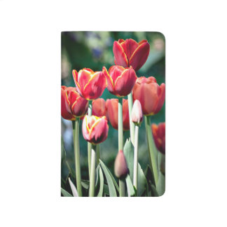 Pocket Journal, Red Tulip Journal
