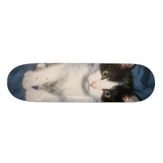 poco1 skateboard deck
