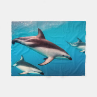 Pod of Dusky Dolphins off of Kaikoura Fleece Blanket