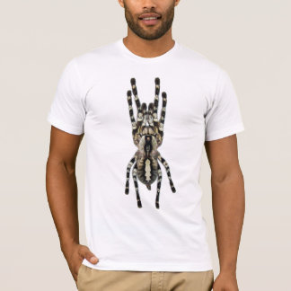 Poecilotheria regalis (Indian Ornamental) T-Shirt
