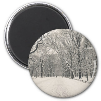Poet s Walk - Central Park Winter Fridge Magnets