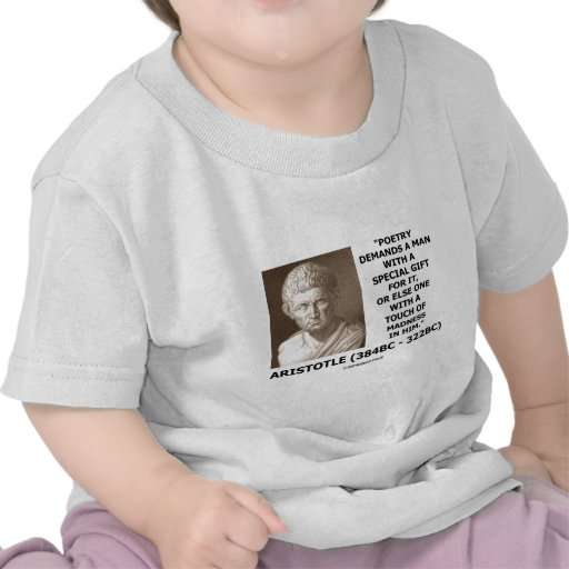 Poetry Gift Touch Of Madness Aristotle Quote Tee Shirt