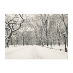 Poet's Walk - Central Park - New York City Gallery Wrapped Canvas