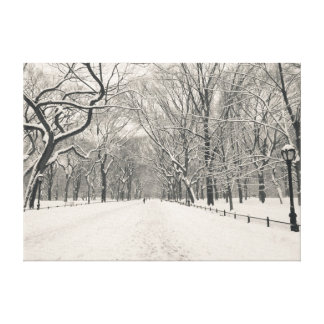 Poet's Walk - Central Park - New York City Canvas Prints