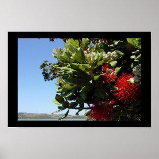 Pohutakawa Tree Blossom Print