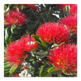 Pohutukawa Tree 13 Cm X 13 Cm Square Invitation Card