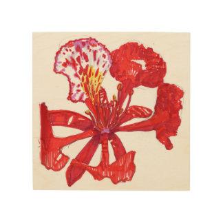 Poinciana flower wall art