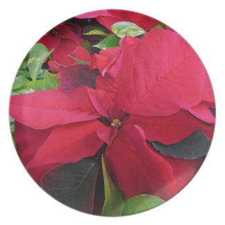 Poinsetta Plate