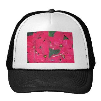 Poinsettas Trucker Hats