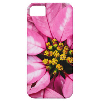 Poinsettia Barely There iPhone 5 Case