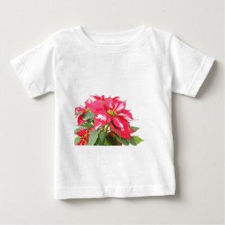 Poinsettia Christmas star Baby T-Shirt