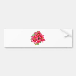 Poinsettia Christmas Star Bumper Stickers
