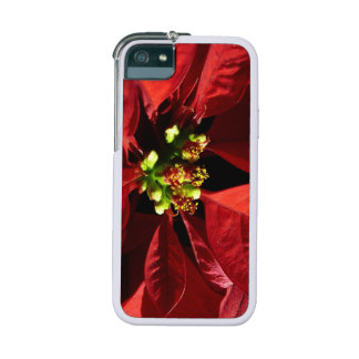 Poinsettia Flower Cover For iPhone 5/5S