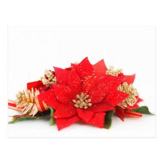 Poinsettia flower Christmas decoration Post Cards