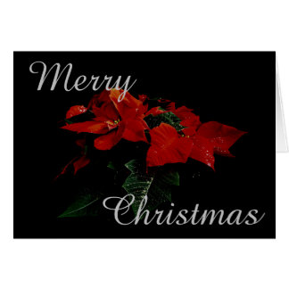 Poinsettia Flower Merry Christmas Family Message Greeting Card