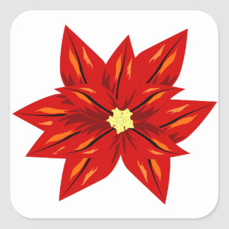 poinsettia flower of christmas square sticker