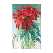 Poinsettia Flowers Stretched Canvas Prints