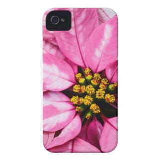 Poinsettia iPhone 4 Covers