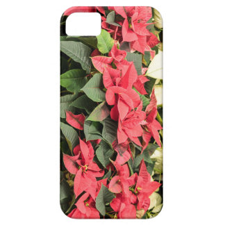 Poinsettia iPhone 5 Covers