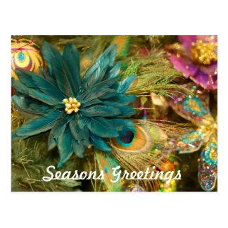 Poinsettia Peacock Feather Christmas Postcard