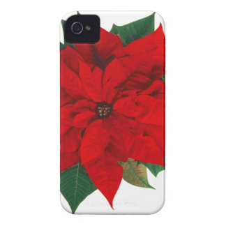 Poinsettia.png iPhone 4 Covers