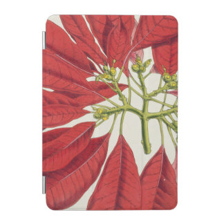 Poinsettia Pulcherrima (colour litho) iPad Mini Cover