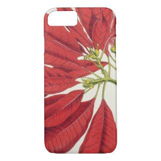 Poinsettia Pulcherrima (colour litho) iPhone 8/7 Case