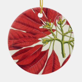 Poinsettia Pulcherrima (colour litho) Round Ceramic Decoration
