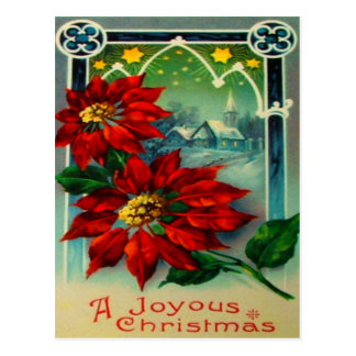 Poinsettias Postcard