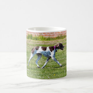 Pointer dog coffee mug