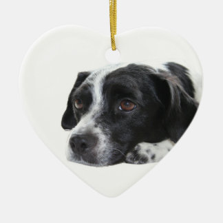 Pointer Dog Ornament
