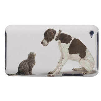 Pointer looking down at cat Case-Mate iPod touch case