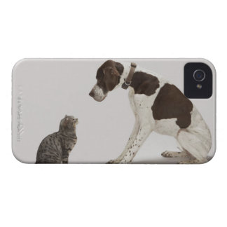 Pointer looking down at cat iPhone 4 Case-Mate case