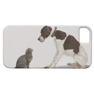 Pointer looking down at cat iPhone 5 case