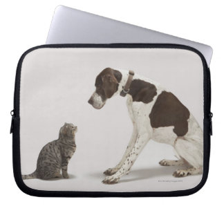 Pointer looking down at cat laptop sleeve