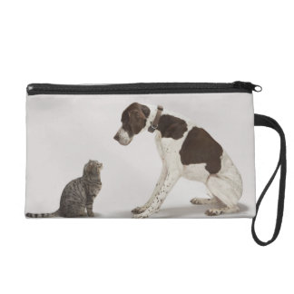 Pointer looking down at cat wristlet purse