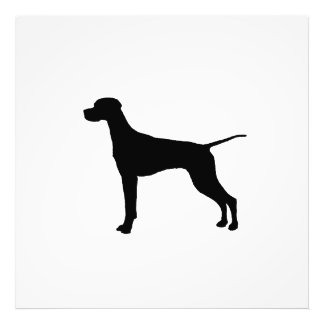 Pointer sporting hunting dog Silhouette Photo Art
