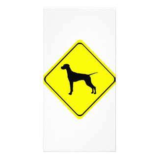 Pointer Warning Sign Love Dogs Silhouette Photo Card