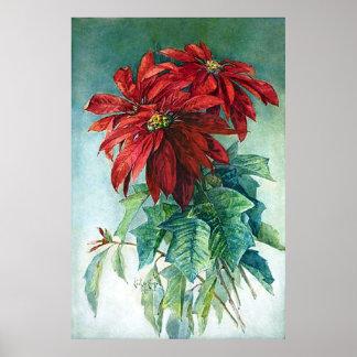 Pointsettias Watercolor Fine Art Print