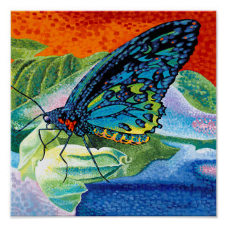 Poised Butterfly II Poster