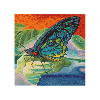 Poised Butterfly II Wood Print