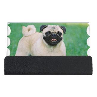 Poised Pug Desk Business Card Holder