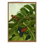 Poison Arrow Frog Card
