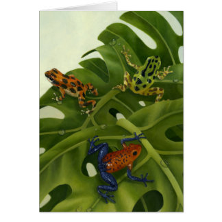 Poison Arrow Frogs Card