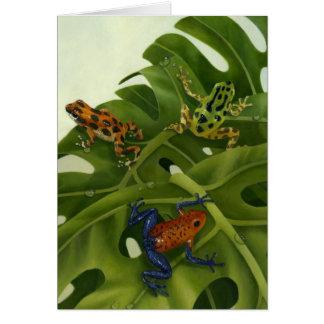 Poison Arrow Frogs Card