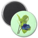 Poison Dart Frog 6 Cm Round Magnet