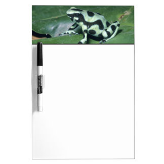 Poison Dart Frog, (Dendrobates auratus) Cahuita Dry-Erase Whiteboard