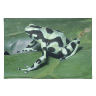 Poison Dart Frog, (Dendrobates auratus) Cahuita Placemat